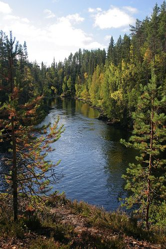 Fluss Kitka am Randes des Nationalparks Oulanka in Finnland