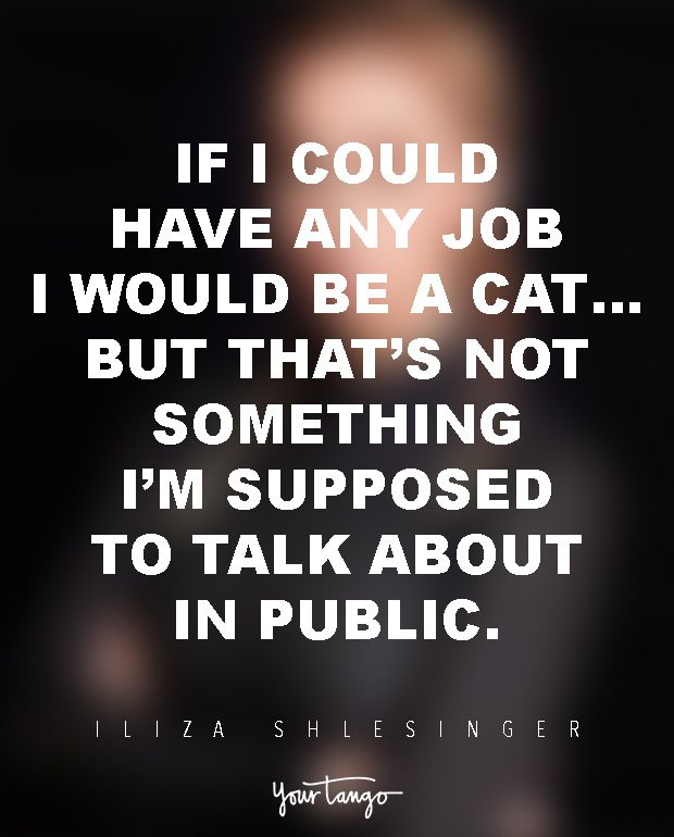 If I could have any job I would be a cat… but that's not something I'm supposed to talk about in public. — Iliza Shlesinger