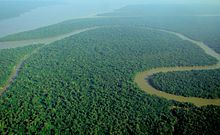 Amazon River - Wikipedia, the free encyclopedia