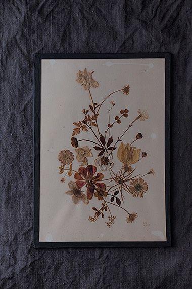 咲き初めた花、色のエナジー-glass dry flower frame 押し花として乾燥させ、額装されたのは1971年と記されているから、濃い色のお花の花弁に残る植物の天然色が未だ残っていてくれて奥ゆかしい。背面に「Bon Anniversaire」-お誕生日おめでとう、とペン書き。いつかの吉日良日に合わせてレイアウトを考えた贈り主の優しい心意気。パッと華やぐブーケなイメージの多種異なるお花、アイボリーに変化してきている年月を組み込んで。ガラスとガラスで挟まれており、端の紙テープが一部破れて抜け落ちが心配だった為、新たに黒いテープで貼り直しております。