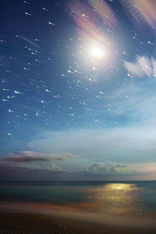 The Moon and Stars 28 images combined, each with a 15 second exposure. Taken around 8:30pm at Caspersen Beach, Florida. Stacked using Waguila's star stacker program and the star spikes program for the diffraction effect.  Photographed by: Paolo Nacpil