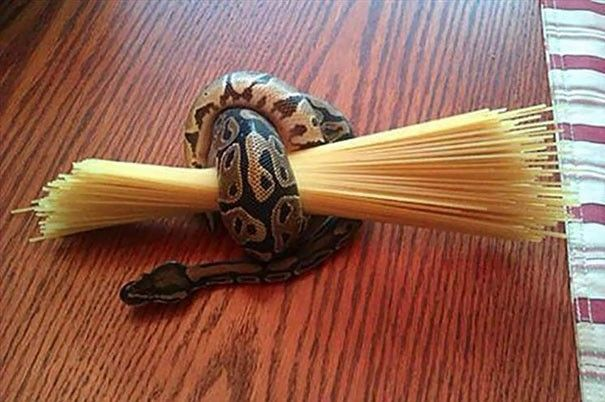Use your snake to hold your pasta while waiting for the water to boil (see tip #1)