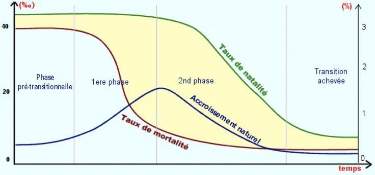 La première phase est caractérisée par des taux de mortalité et de natalité élevés. (ex : la mortalité infantile était de 250 morts pour 1000 naissances). Conséquence, il fallait faire beaucoup d'enfants pour les voir arriver à l'âge adulte.  La deuxième phase est caractérisée par un effondrement du taux de mortalité et d'une natalité qui reste importante. La chute de la mortalité est la conséquence d'une meilleure hygiène, de l'assainissement des eaux usées ect... .