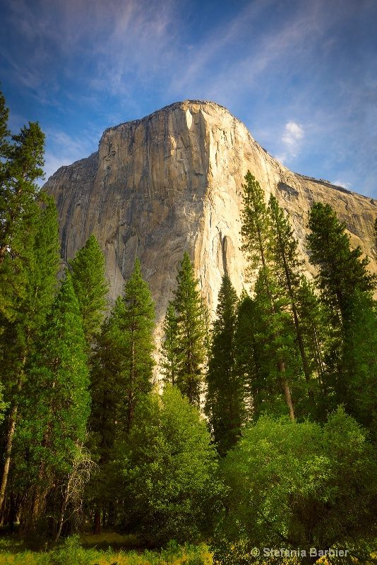 El Capitan                                                       …                                                                                                                                                                                 More