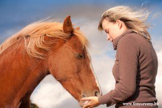 Miért szeretjük a lovakat és miért ők az ember legjobb barátai?