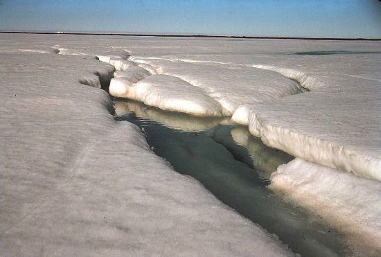 Colin Dickey, CalArts Alum going to the Artic arctic.jpg