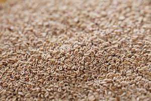 Does Psyllium Fiber help with Ulcerative Colitis?