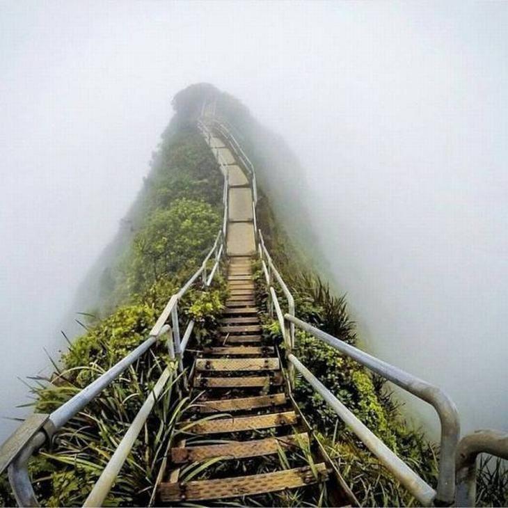 The 'Stairway to Heaven' in Oahu, Hawaii.