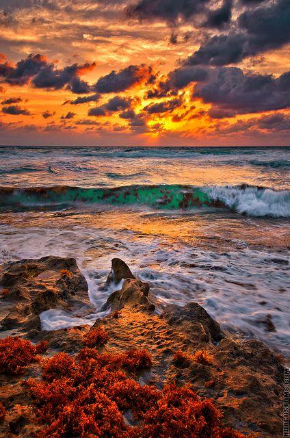 ~~Seaweed sunrise galore over Juno Beach, Florida by HDRcustoms~~