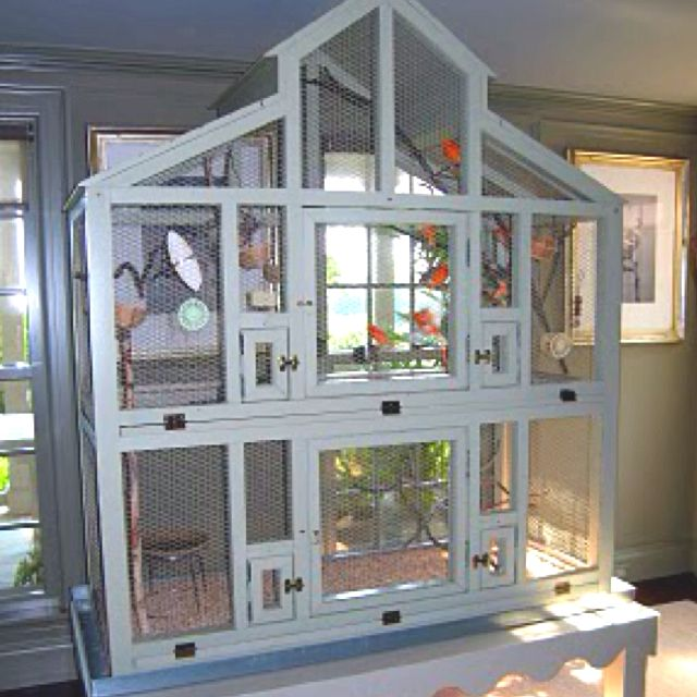 My husband made me this Martha Stewart flight cage in 2002 as an anniversary gift. It's a story shorter and it's still huge!