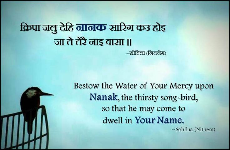क्रिपा जलु देहि नानक सारिंग कउ होइ जा ते तेरै नाइ वासा ॥ Bestow the Water of Your Mercy upon Nanak, the thirsty song-bird, so that he may come to dwell in Your Name. ~Sohila  (Nitnem)