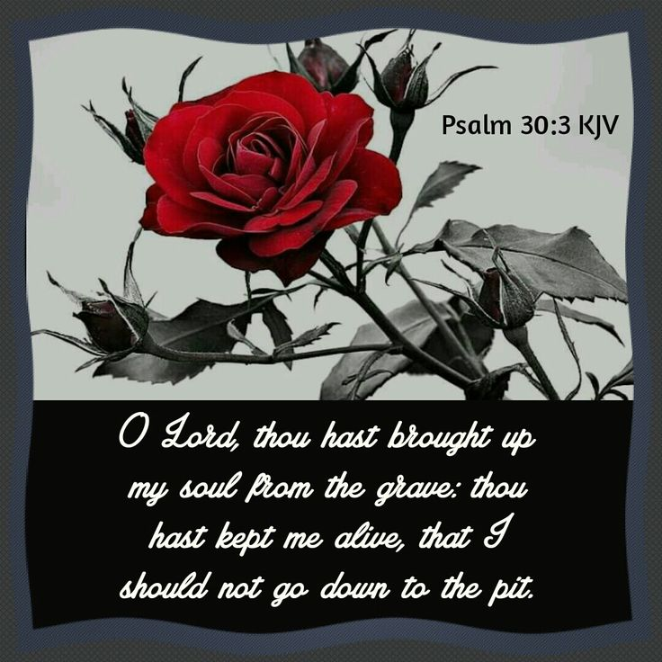 Psalm 30:3 KJV