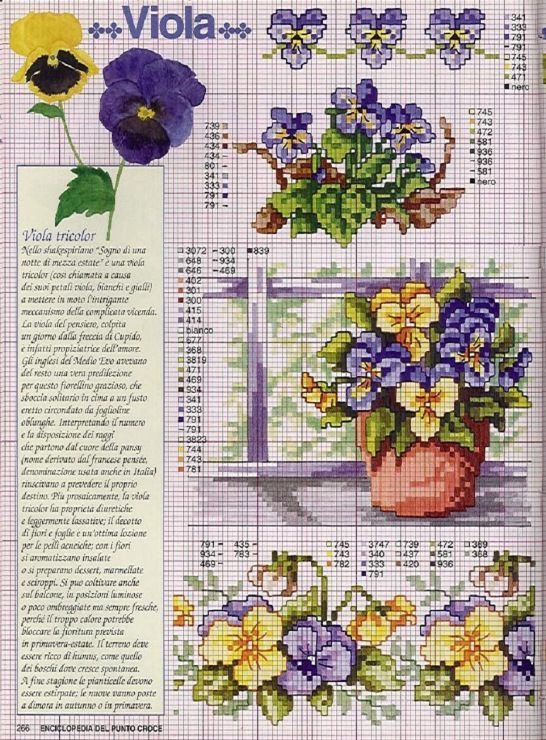 Gallery.ru / Фото #88 - Ботаника-цветы - irislena