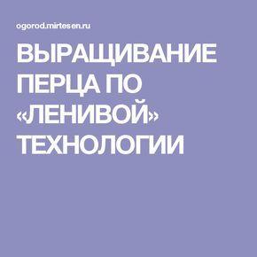 ВЫРАЩИВАНИЕ ПЕРЦА ПО «ЛЕНИВОЙ» ТЕХНОЛОГИИ