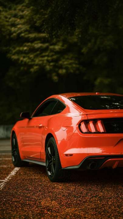 Ford Mustang Iphone Xr Wallpaper