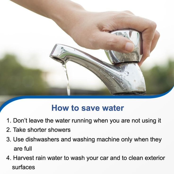 Image result for different ways to save water