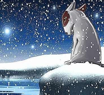 Let the loneliest little #dog in the world into your home this #Christmas... WINNER: #MOONBEAM AWARD 2015 Best Illustrated Children's Ebook WINNER: #IPPY AWARD 2015 Best Illustrated Children's Ebook WINNER: READER'S FAVORITE AWARD 2015 Best Children's #Animal Book WINNER: STORY MONSTER 2015 Story Monster Approved Award Click to buy your copy HERE