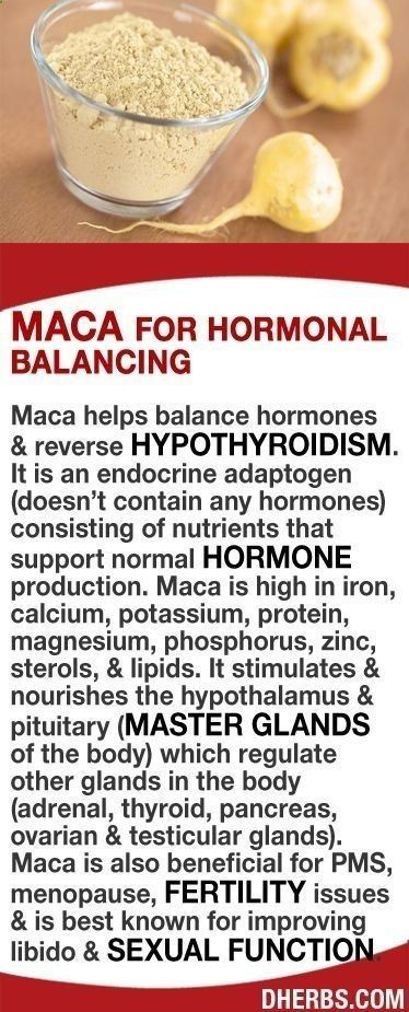 Hypothyroidism Diet - Maca helps balance hormones  reverse hypothyroidism. It is an endocrine adaptogen consisting of nutrients that support hormone production. Its high in iron, calcium, potassium, protein, magnesium, phosphorus,  zinc. It stimulates  nourishes the hypoth Thyrotropin levels and risk of fatal coronary heart disease: the HUNT study.