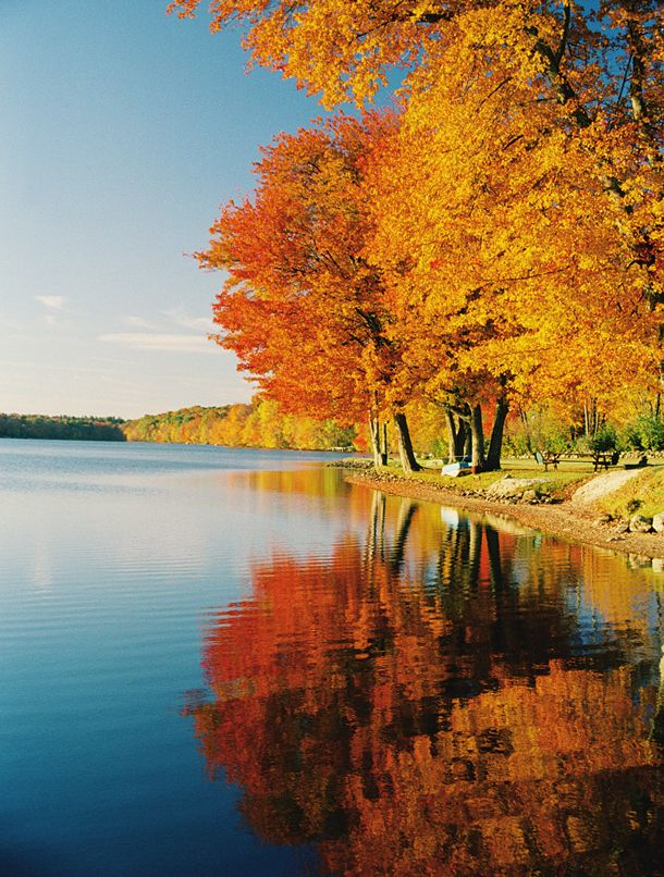 Autumn Photography: 24 tips on how to take awesome pictures of Fall - http://www.digitalcameraworld.com/2013/09/23/autumn-photography-24-tips-on-how-to-take-stunning-pictures-of-fall/1/