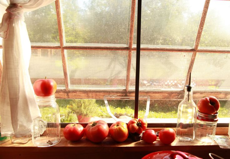 this kitchen window sill pic just makes me happy: House Windows, Farm Windows, Kitchen Windows, Fresh Tomatoes, Tomatoes Window, Kitchens Things, Beautiful Things