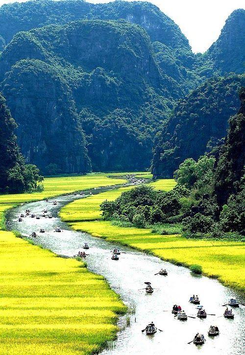 """Tam Cốc-Bích Động es un popular destino turístico cerca de la ciudad de Ninh Binh en el norte de Vietnam. Las Tam Coc (que quiere decir """"tres cuevas"""") está a tres horas en lancha por el río Ngo Dong, a partir de la aldea de Van Lam y pasando a través de un pintoresco paisaje dominado por campos de arroz y las torres cársticas. La ruta incluye tres cuevas naturales (Hang Ca, Hang Hai, y Hang Ba), la mayor posee 125m de largo, con su techo a unos 2 metros de altura sobre el agua."""