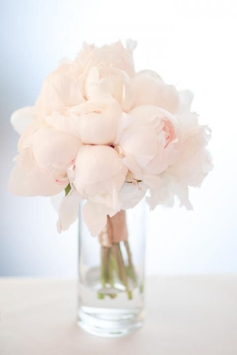 Lovely pale pink peonies. flowers bouquet wedding