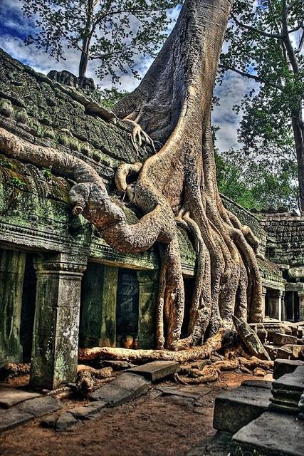 Angkor Wat - loved it here
