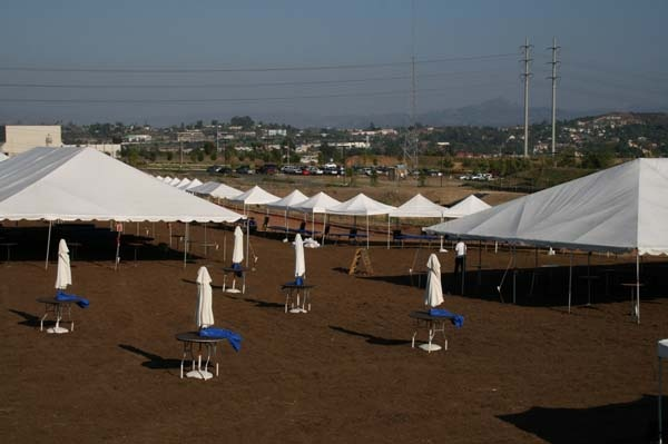 Allie S Party Rental 2in Frame Tents Large Tent Tent Party