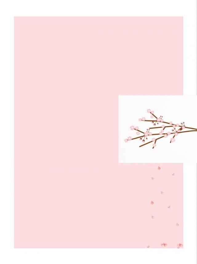 Pink Peach Flower Background Flower Backgrounds Flower Background Images Peach Flowers