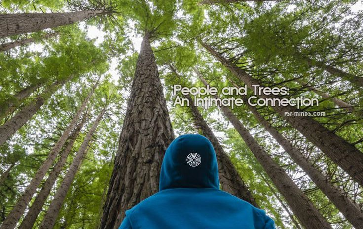 People and Trees: An Intimate Connection - @psyminds17