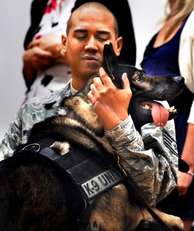 """1000+ Images About War Dogs """" Honor Our Vet """" On Pinterest"""