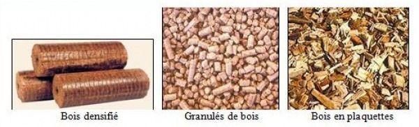 biomasse lignocellulosique