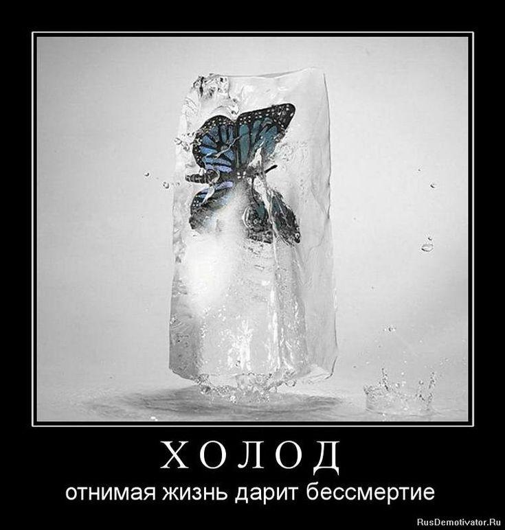 Картинки про морозную погоду прикольные с надписями