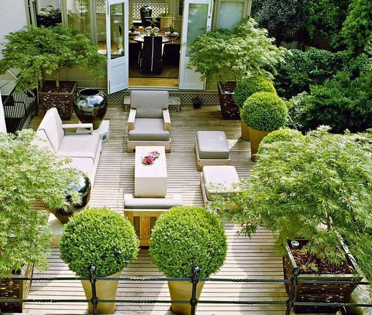 Designer Luciano Giubbilei's own London terrace garden