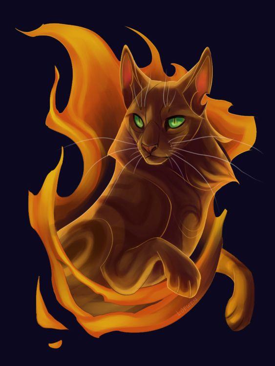 Огненный кот картинки