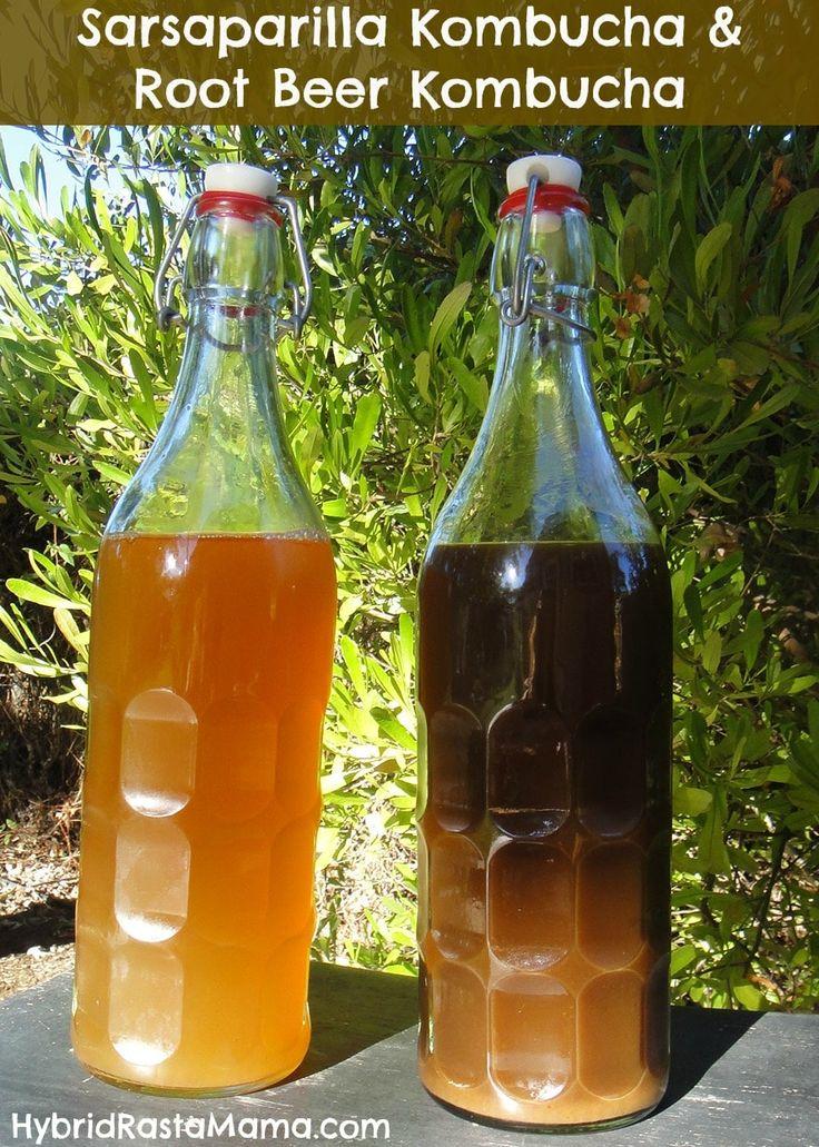 Sarsaparilla Kombucha and Root Beer Kombucha Recipes