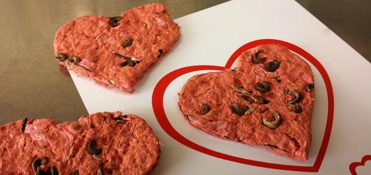 DIY Valentinstag Geschenk Samenpapier