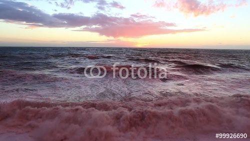 """Scarica il video Royalty Free  """"rough sea in Camogli with pink sunset reflections over the sea"""" realizzato da TTLmedia al miglior prezzo su Fotolia . Sfoglia la nostra banca di immagini online per trovare il video perfetto per i tuoi progetti di marketing a prezzi imbattibili!"""