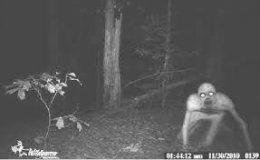 Fotos espeluznantes #terror #fantasmas #cementerios #esoterico #esoterimos #espiritus #real #fotos #antiguas #miedo #sobrenatural #paranormal