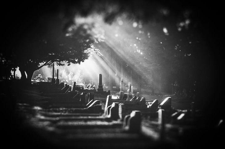 Visiting hours !   #hamilton #nz #cemetery #monochrome #middletonjoshua #nzphotographer #influencer #foggy #light #beam #grain #streetstyle #instadaily #instamood #bnwphotography #bnw_captures #bnwmood #bnw #nzimagery #lovethetron #pentaxk5 #sigma #benro #lowepro