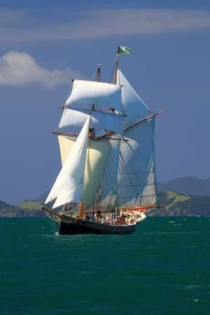 The R. Tucker Thompson: Tall ship sailing in the Bay of Islands, New Zealand