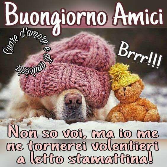 1113 best saluti di buon giorno images on pinterest for Buongiorno sms divertenti