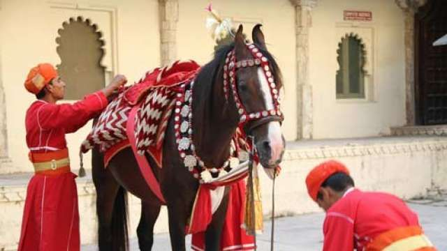 The #Royal #Horse getting dressed for the #occasion.  According to #Hindu #traditions, a horse has very important #religious #significance; they are the #symbol of #loyalty, #self-respect, and #power. At the time of wars they not only become warrior's lone supporters but also sometimes are the only scope and hope for survival. #travel #knowmore #seeIndia #destinationIndia #India
