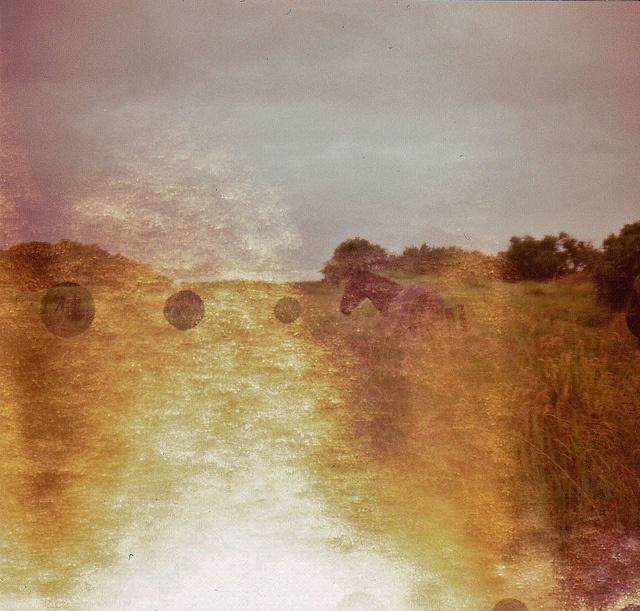 So I Got Me Some Horses to Ride on. Photograph taken by Milla-Maria Joki (2011)