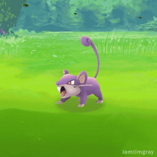 This GIF is everyone's life playing Pokémon Go - DigitalSpy.com