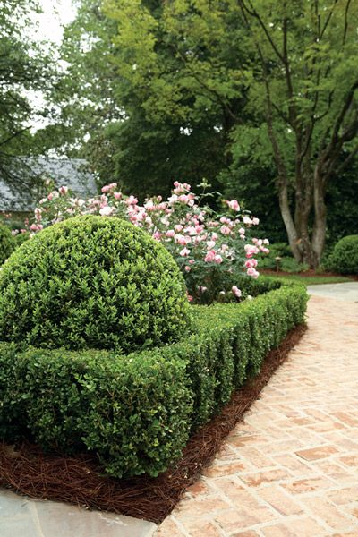 Mixing rounded American boxwood atop Korean boxwood adds an unexpected touch to this classic garden by Alex Smith.