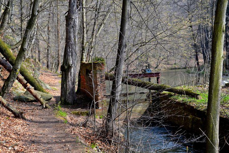 Leśna, Baworowo - fabryka pełna tajemnic, geocaching