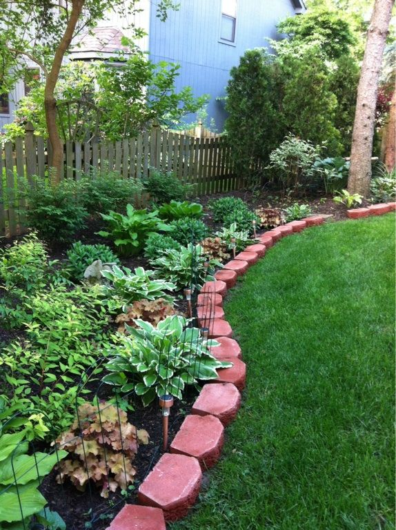 17 best images about shade gardens on pinterest gardens for Best low maintenance plants for shade