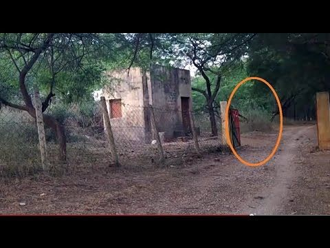 Ghost figure appeared and moves toward cabin. GHOST at forest check post? - YouTube