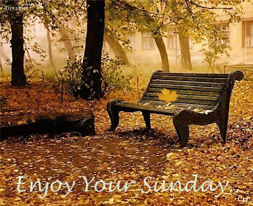 Résultats de recherche d'images pour «autumn Sunday»